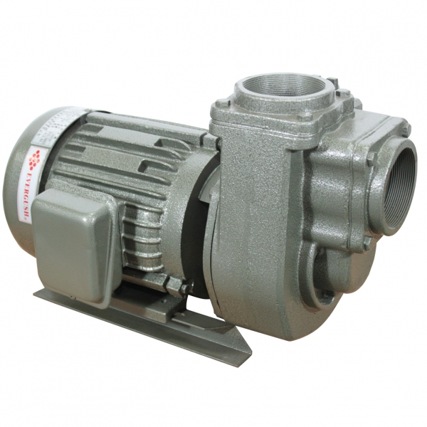 SQD Self-priming Centrifugal Pumps